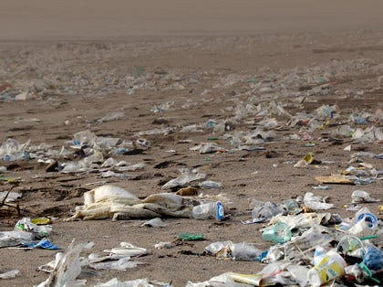 Blog: L'interdiction UE du plastique