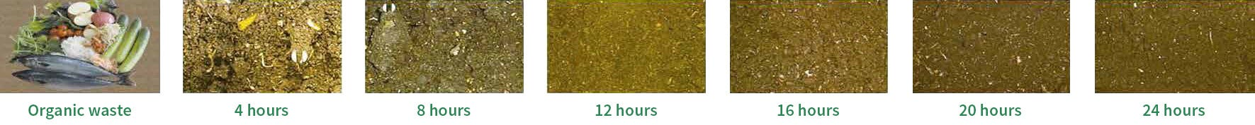 composting cycle 24 hours